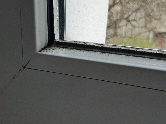 Ostseebad Baabe, Almanya: Fenster im Bad