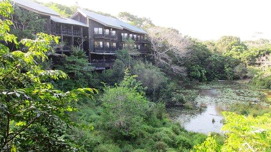 Shimba Hills National Reserve, Kenia: Baumhotel mit Wasserloch