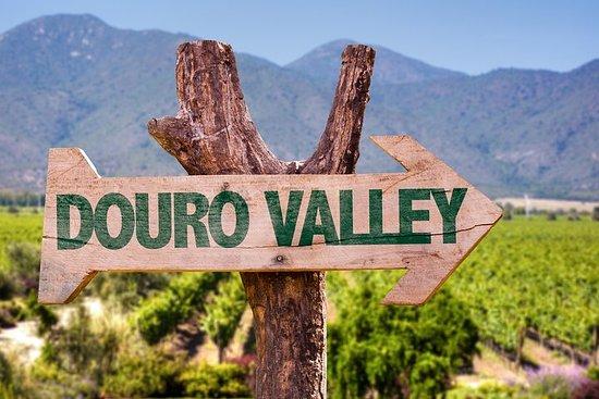 Douro Valley Tour: Wine Tasting...