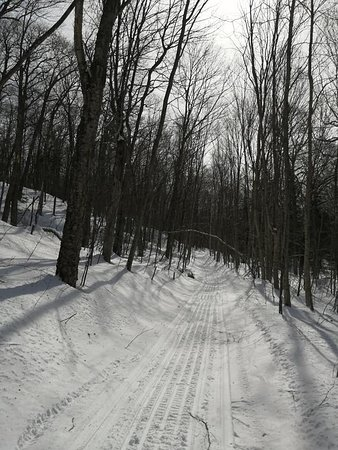 endless trails for hiking or snowmobiling
