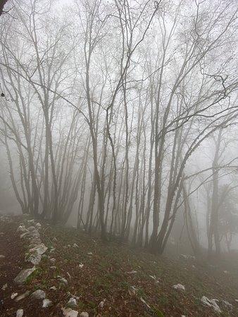 Keserwan District, Lebanon: Fog