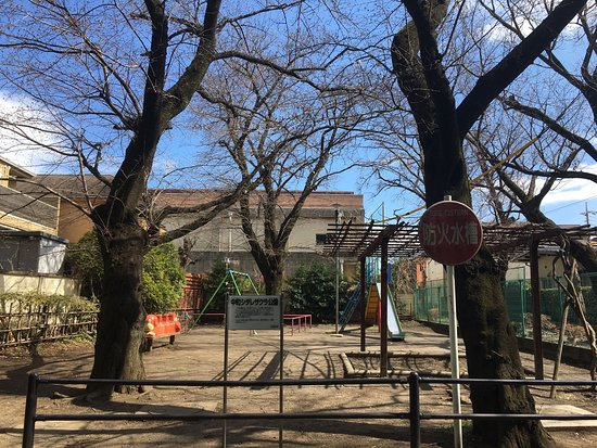 Nakacho Shidare-zakura Park