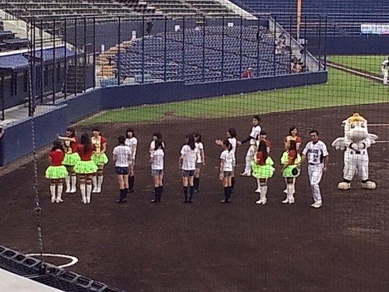 Jomon Shimbun Shikishima Baseball Stadium