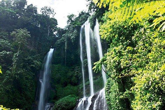 Melhor da Bali Lemukih Cachoeira...