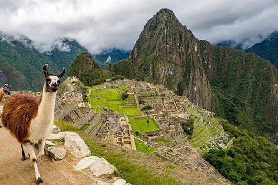 Machu Picchu Ticket: Official...