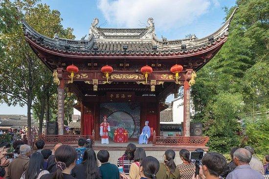 Tour di un giorno a Shanghai nella