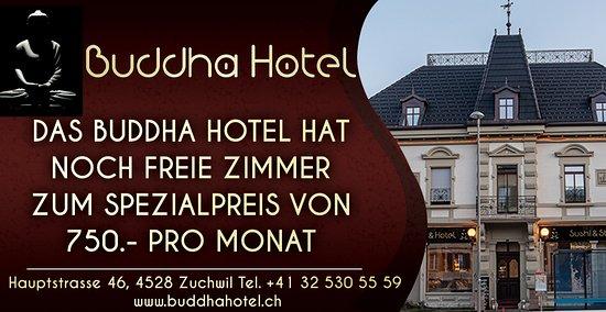 Zuchwil, Швейцария: DAS BUDDHA HOTEL HAT NOCH  FREIE ZIMMER  ZUM SPEZIALPREIS VON  750.- PRO MONAT