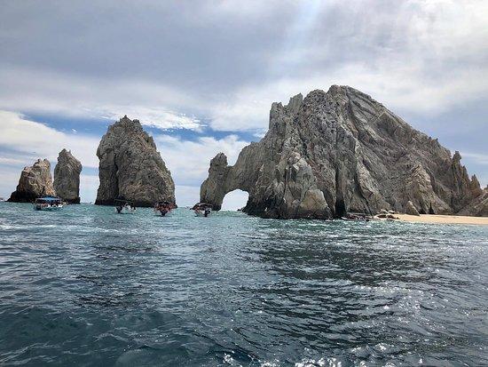 カボ・サン・ルーカスでザトウクジラのホエールウォッチング