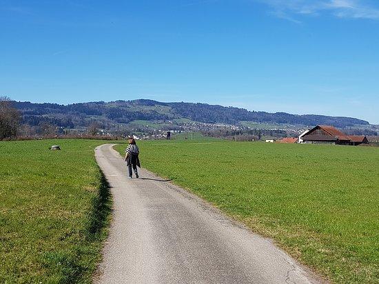 Wanderung zum Rotblattstübli