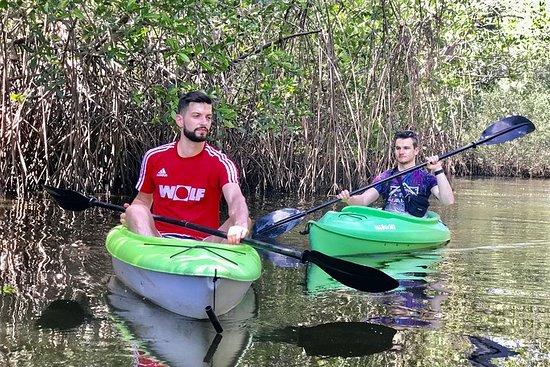 Kayak Visite privée sur l'île Juan...