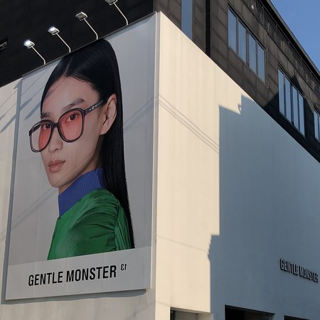 Gentle Monster Parallel