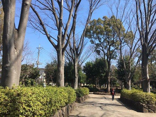 Kitafuchu Park