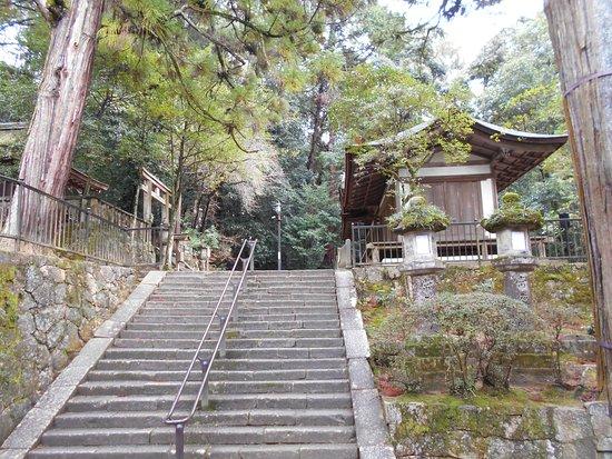 Isonokami Jingu Sessha Izumo Takeo Shrine Haiden