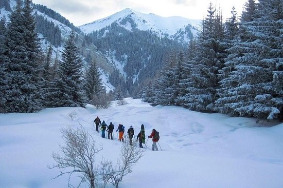 1-dagers Backcountry Tour