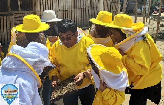 Illimo, Peru: Descubre el apasionante mundo apícola a través de la #RutaDeLaMiel en #Íllimo.