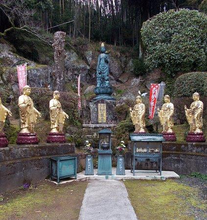Kofukuji No Bokefuji Nagaiki Kannon Bosatsu