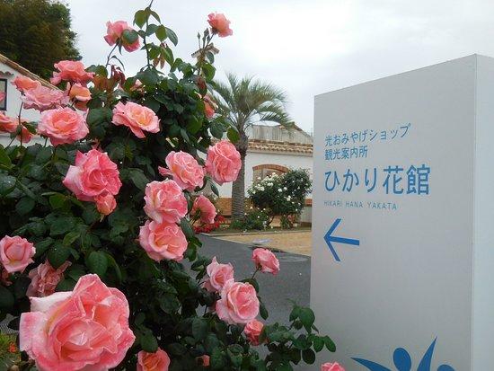 Hikari-city Tourist Association, Hikari Hana Kan