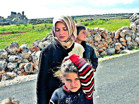Apamée, Syrie: Apamea 55