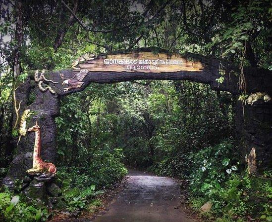 Janaki Forest