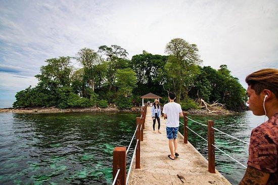 Survivor Island + Binsulok Daytour