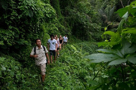 Private Full-Day Bali Jungle Trekking...