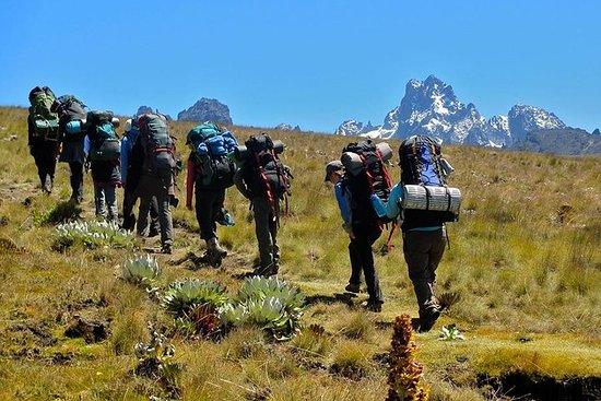 6 dagar Mt Kenya Climbing (Sirimon ...