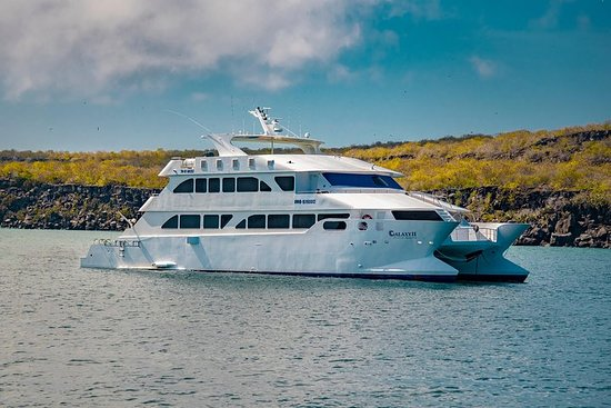6 Days in Galapagos | Eco Galaxy First Class Cruise | Western...