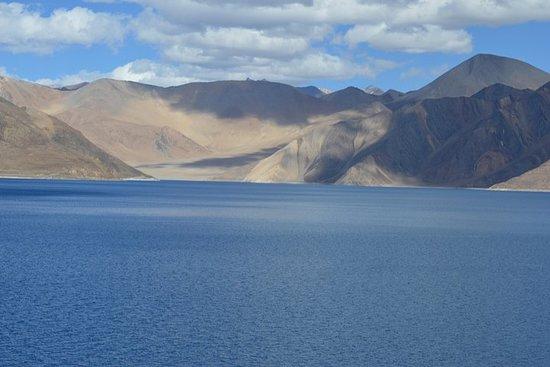 Pangong Lake Day tour from Leh