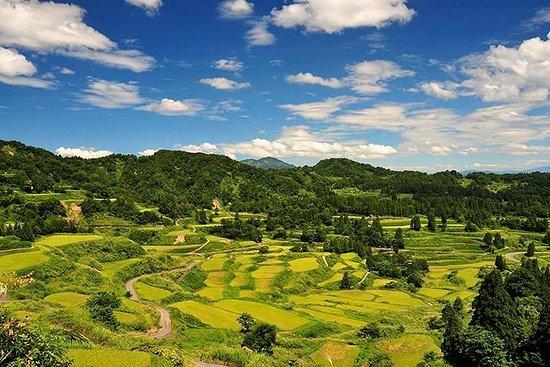 Niigata halvdag privat tur med nasjonalt lisensierte guider