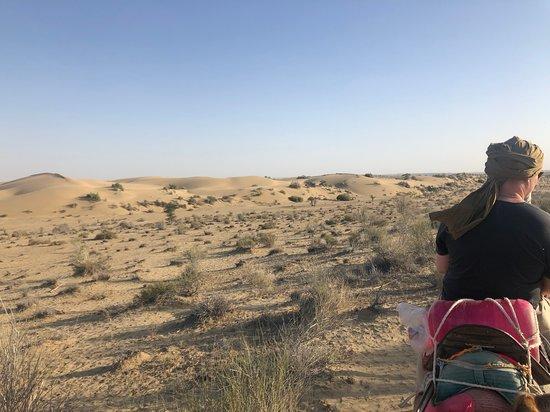 Salim Thar Desert Safari