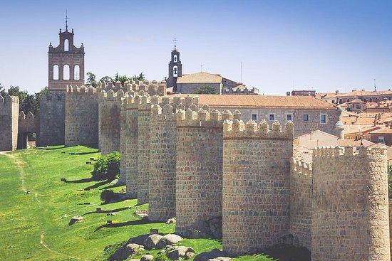 Tour privado por Ávila, Segovia y El...