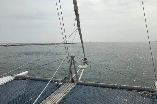 Sail Wild 45'