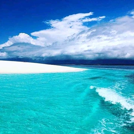 That is picture has been taken some where on mafia on sandbank called sefu sandbank so what we can do we make sandbank tour u will have lunch and snorkeling there that is also we can offer different tour as u wish like diving bweni tour I mean light house so I will make more recommendations for u and u will real enjoy ur stay