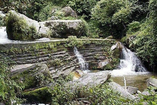 Shivapuri nasjonalparkdagstur fra...