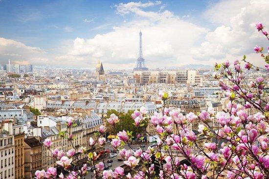 Curioseety Paris