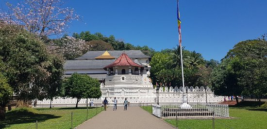 Great service and brilliant tour Kandy