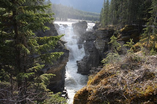 Athabasca Falls (Jasper) - All You Need to Know BEFORE You ...
