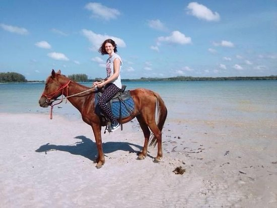 Horse Riding Koh Lanta