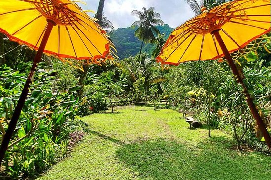 Sacred Mountain Bali