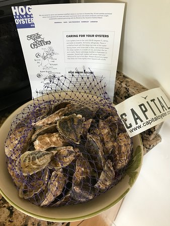 Marshall, Kalifornie: Hog Island Oysters delivered by FedEx today!  Capital Oysters!!!