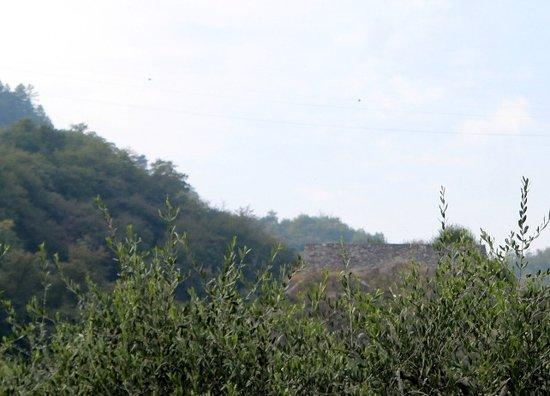 Torre di via Montagnola