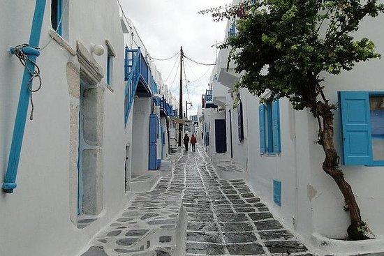 Escursione a terra di Mykonos: tour