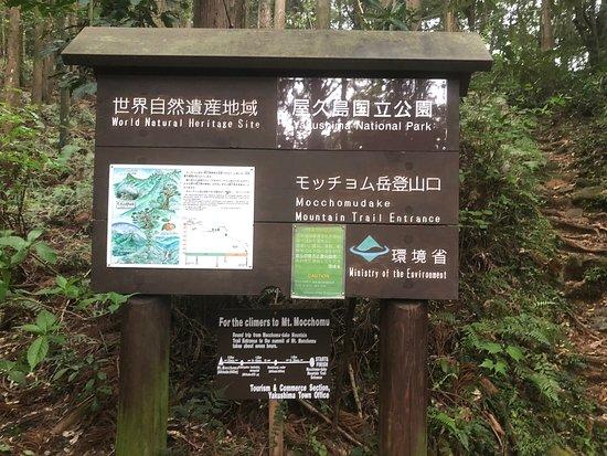 Ryujinno-taki Falls