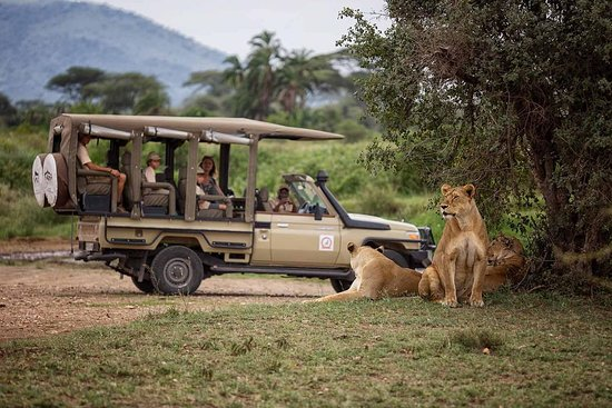 Kenzan Wildlife Safaris Ltd