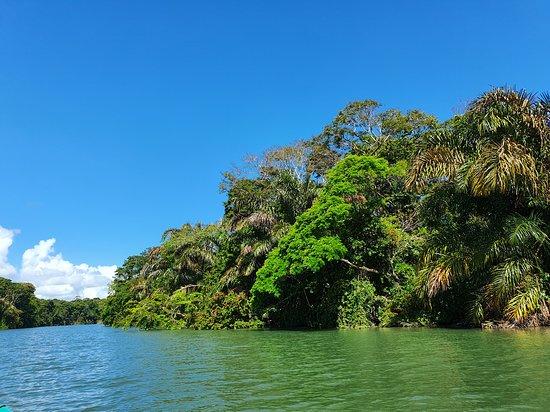 Barra de Pacuare Photo