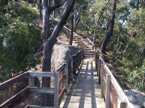 Tyers, Austrálie: Steps down to the second viewing platform