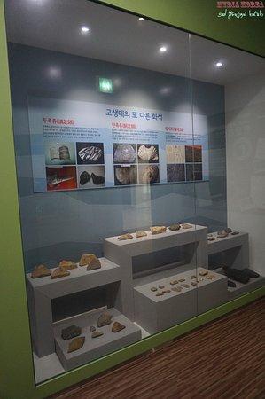 Yanggu-gun, เกาหลีใต้: 삼엽충 외의 고생대의 화석들