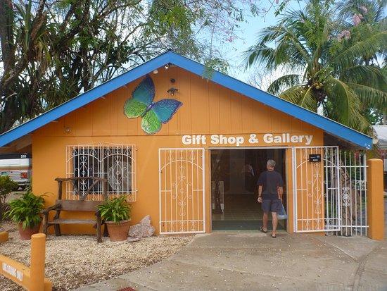 Unitedville, Belize: The Orange Gallery