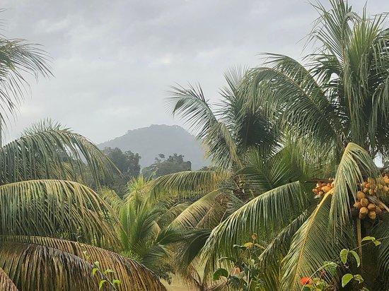 Kabalebo, Суринам: Misty Mountain