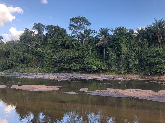 Kabalebo, Суринам: Blick von den Riverside Cabanas auf den Fluss